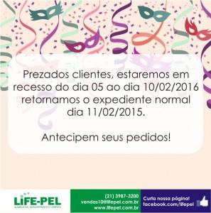 design-administracao-redes-sociais-impresso-site-grafica-centro-rj-rio-de-janeiro-carnaval-2-sinalizacao-empresa-life-pel-penha