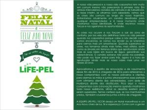 design-administracao-redes-sociais-impresso-site-grafica-centro-rj-rio-de-janeiro-cartao-de-natal-sinalizacao-empresa-life-pel-penha