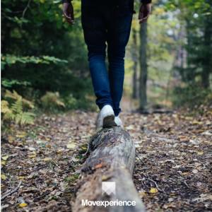 turismo-aventura-sp-trilha-caminhada-natureza-ecoturismo-atividade-sustentável-seguro-grupo (2)