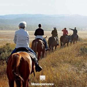 turismo-aventura-sp-trilha-natureza-ecoturismo-atividade-sustentável-seguro-grupo-companhia-cavalgada (2)