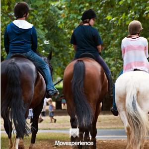 turismo-aventura-sp-trilha-natureza-ecoturismo-atividade-sustentável-seguro-grupo-companhia-cavalgada